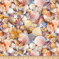 Timeless Treasures Beach Day Assorted Packed Beach Shells Multi