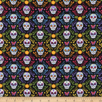 Andover Day of the Dead Mariposas Night