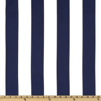 Swavelle Indoor/Outdoor Finnigan Stripe Indigo