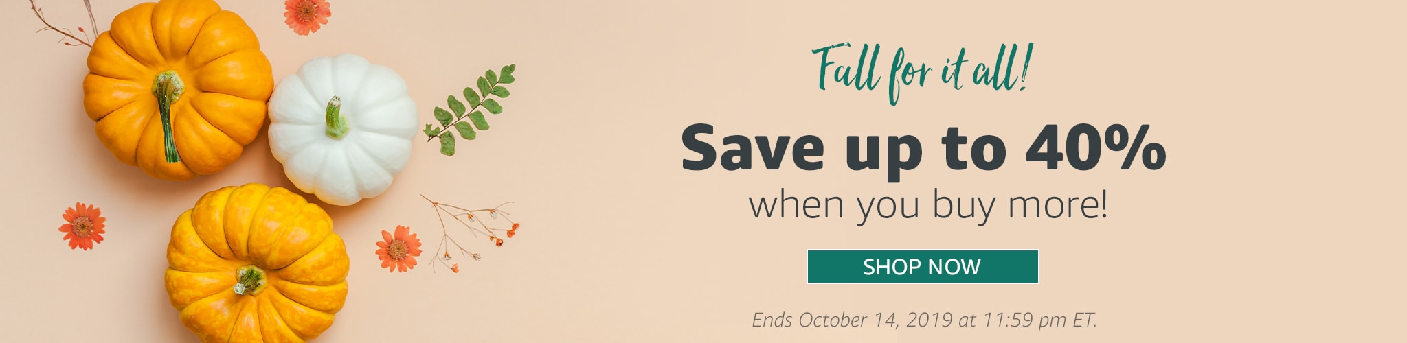 Fall for it all sale