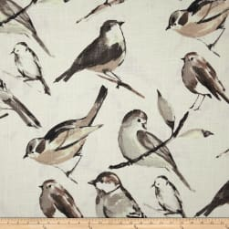 Richloom Birdwatcher Charcoal Fabric