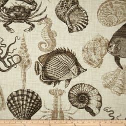 Richloom Solarium Outdoor Sealife Driftwood Fabric