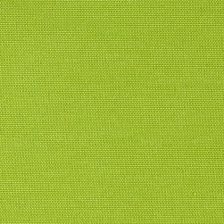 Swavelle Indoor/Outdoor Fresco Solid Apple Green