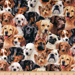 Dog Breeds Packed Dogs Black