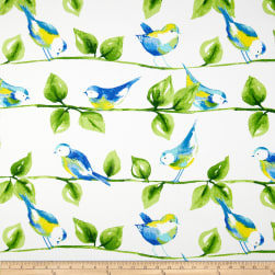 Richloom Solarium Outdoor Curious Birds Garden Fabric