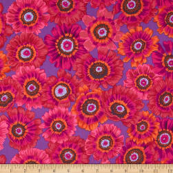 Kaffe Fassett Collective Painted Daisy Magenta