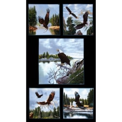 Majestic Bald Eagle 24 In. Panel Black Fabric