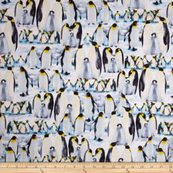 Kanvas The Great North Wilderness Penguin Parade Ice