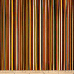 Sunbrella Outdoor Canvas Mode Stripe Lakeside Fabric