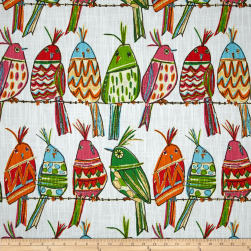 Richloom R Gallery Sitting Pretty Rainbow Fabric