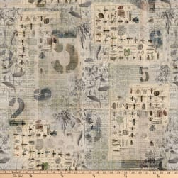 Tim Holtz Eclectic Elements Wallflower Entomology Multi Fabric