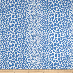 P Kaufmann Indoor/Outdoor Cape Cosmos Azure Fabric