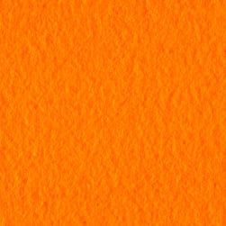 Polar Fleece Solid Bright Orange Fabric