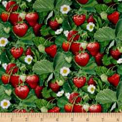 Berry Good Strawberries Green