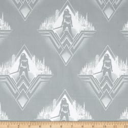 DC Comics Batman v Superman Dawn of Justice Wonder Woman Silhouette Stone