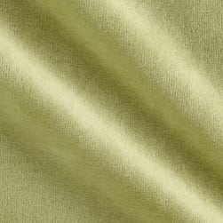 Solid Velour Sage Fabric