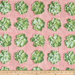 Joel Dewberry Cali Mod Succulents Cactus Fabric