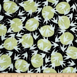 Kaufman Marks by Valori Wells Birds Graphite Fabric