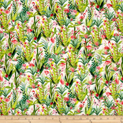 Flamingos Flamingo Floral Multi Fabric