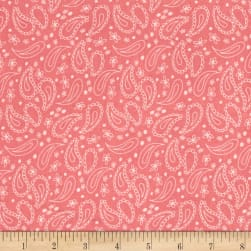 On The Road Again Paisley Pink Fabric