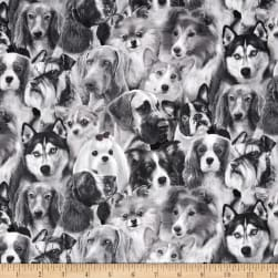 Dog Breeds Pack Dogs Gray Fabric