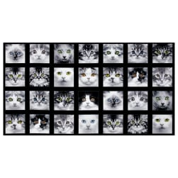 Adorable Pets Cats 23'' Panel Black Fabric