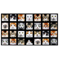 Adorable Pets Cats 23'' Panel Multi Fabric