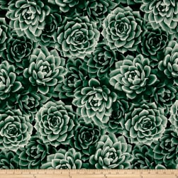 Agave Large Packed Succulents Elm Fabric