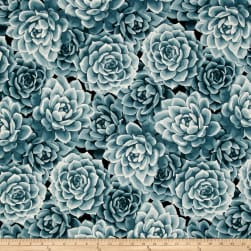 Agave Large Packed Succulents Eucalyptus Fabric