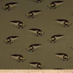 Birch Organic Charley Harper Western Birds Interlock Knit Burrowing Owl