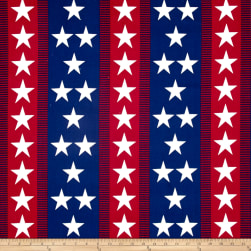 Patriotic 2017 Bunting Stripe Multi Fabric