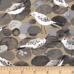 Michael Miller Sandpipers Sandpipers Stone Fabric