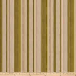 Fabricut Brian Embroidered Stripe Olive