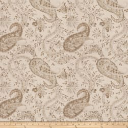 Fabricut Deflect Paisley Canvas Opal Fabric