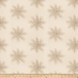 RI School of Design Sunburst Latte Fabric