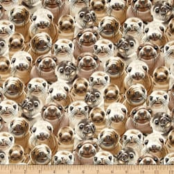 Timeless Treasures Selfie Squad Sealions Sealion Fabric