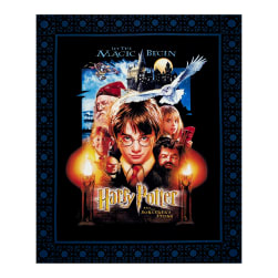 "Harry Potter Sorcerer's Stone Digital Poster 36"" Panel Multi"