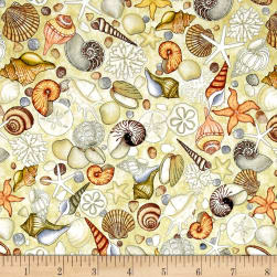 Ocean Oasis Shells Dark Cream