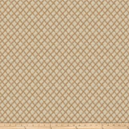 Fabricut Diamond Rio Pumpkin Fabric