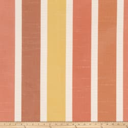 Trend 1623 Lollipop Fabric