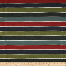 Covington Outdoor Solution Dyed Raceway Ivy League Fabric