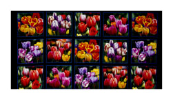 "Tulips Digital Print Garden 24"" Panel Black"