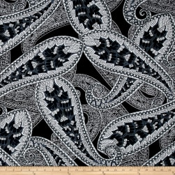 ITY Stretch Jersey Knit Large Paisley Black/White/Gray