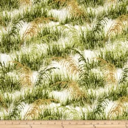 Timeless Treasures Beach Haven Beach Grass Grass Fabric