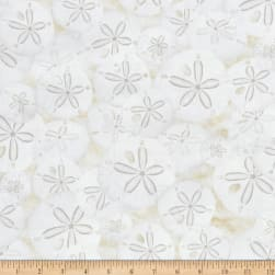 Timeless Treasures Beach Haven Sand Dollars Cream Fabric
