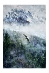 "Call Of The Wild Digital 43"" Panel Eagle Mountain Scene Aspen"