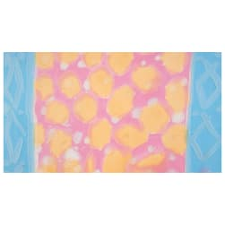 Bali Brushstroke Batiks Blotch Double Border Sherbet Fabric