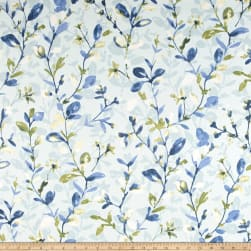 Swavelle/Mill Creek Sweetie Pie Rainwater Fabric