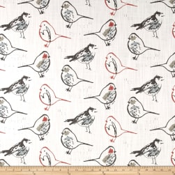 Premier Prints Bird Toile Scarlet Fabric