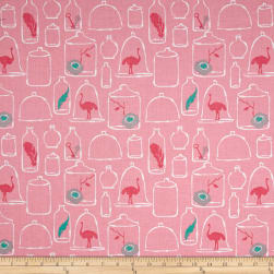Riley Blake Curiosities Jars Pink Fabric